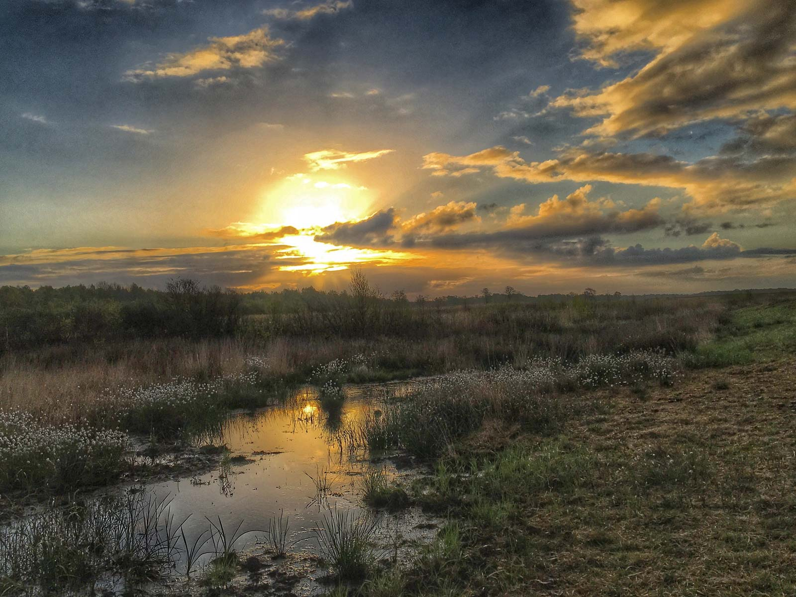 Fantastischer Sonnenaufgang im Hiller Moor.