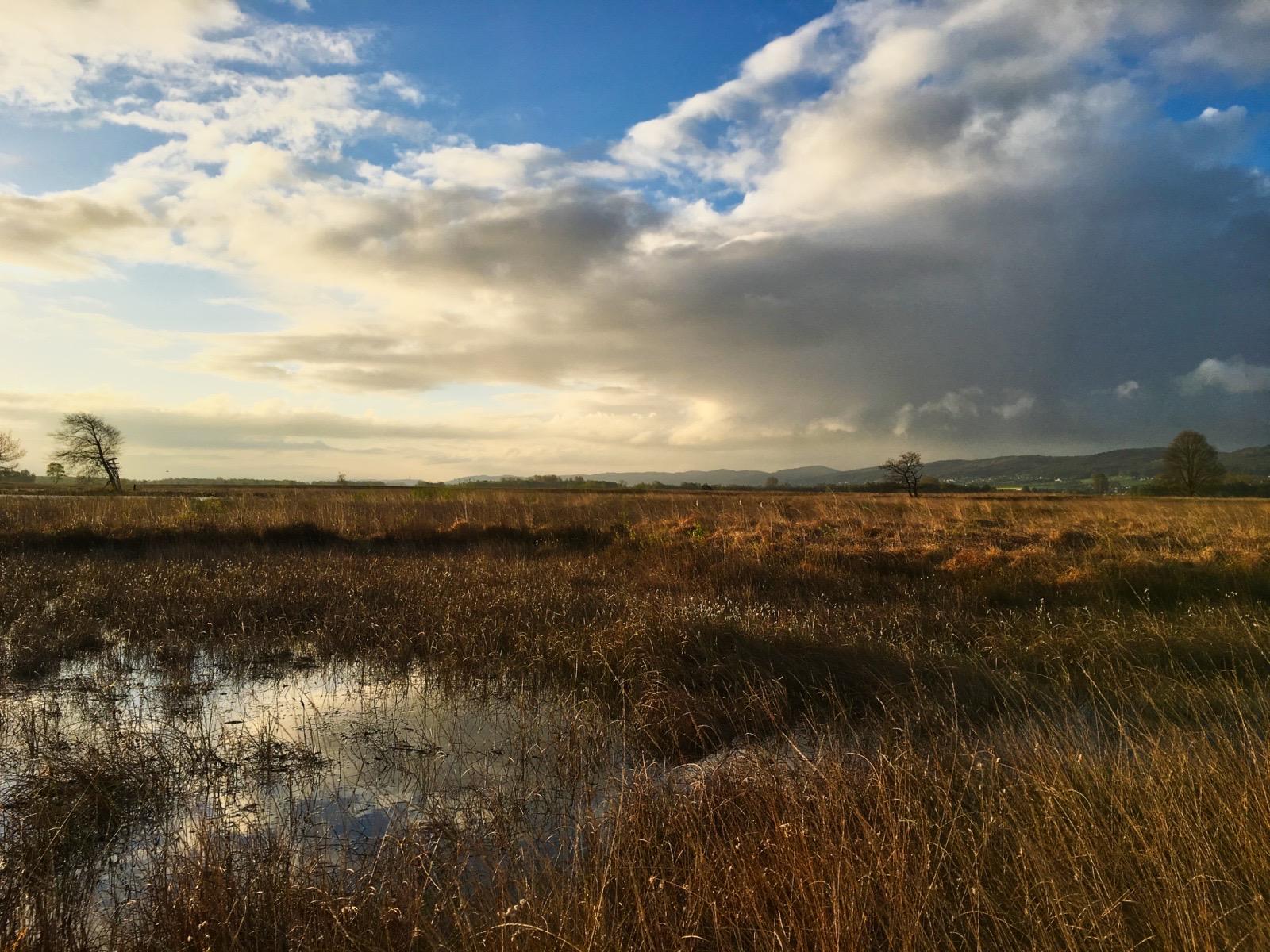Wolken im Hiller Moor.