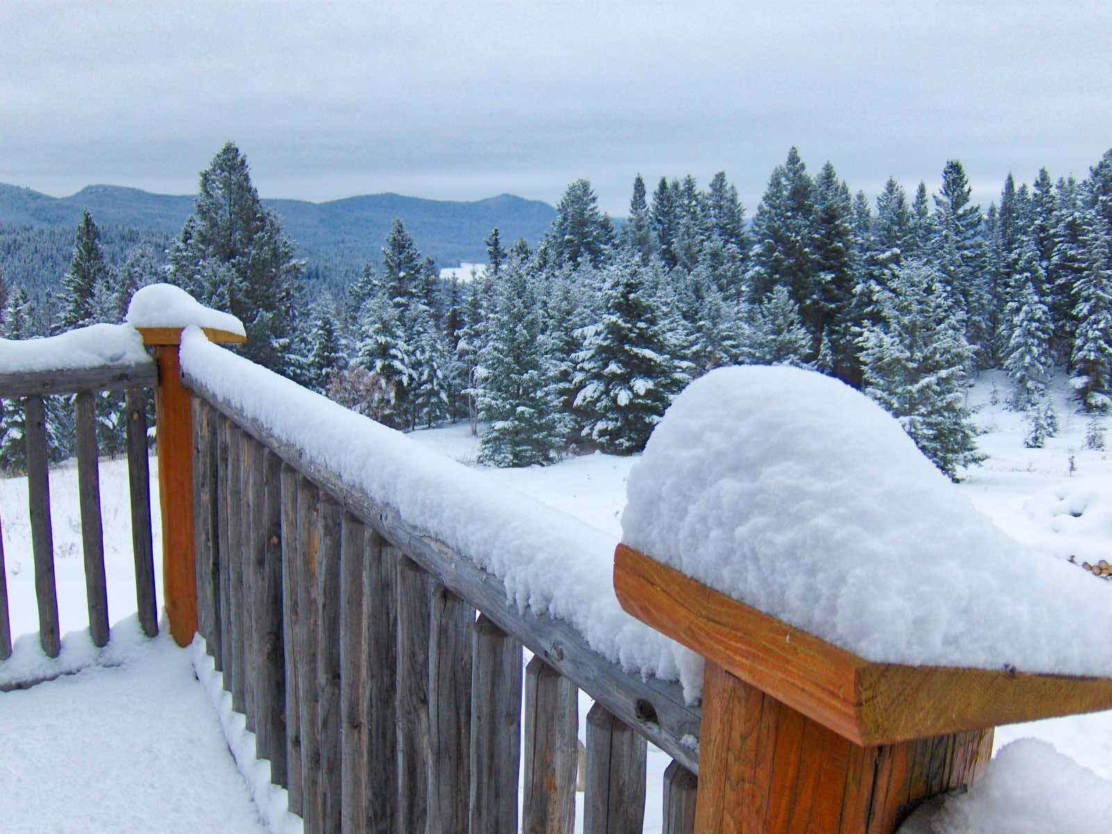 Morgendlicher Blick von der Veranda.