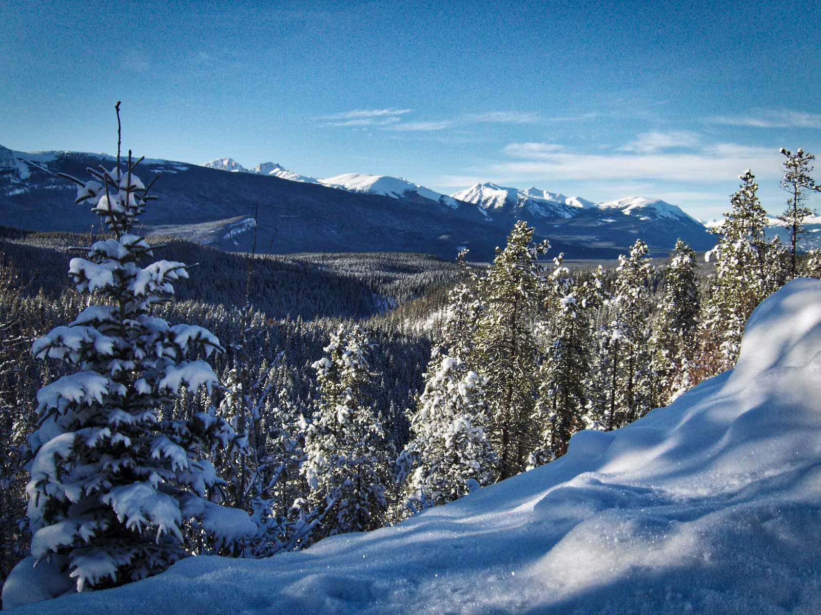 Die Fahrt durch die kanadische Winterlandschaft bietet grandiose Ausblicke.