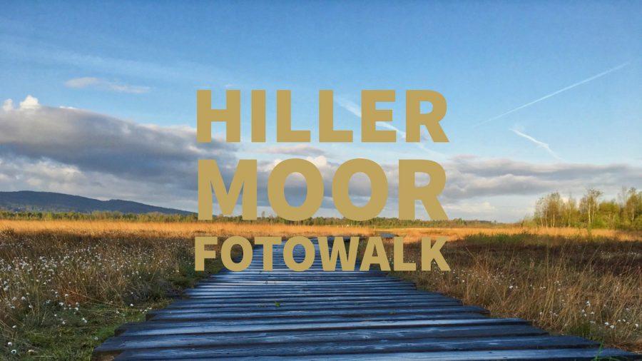 Fotowalk im Hiller Moor.