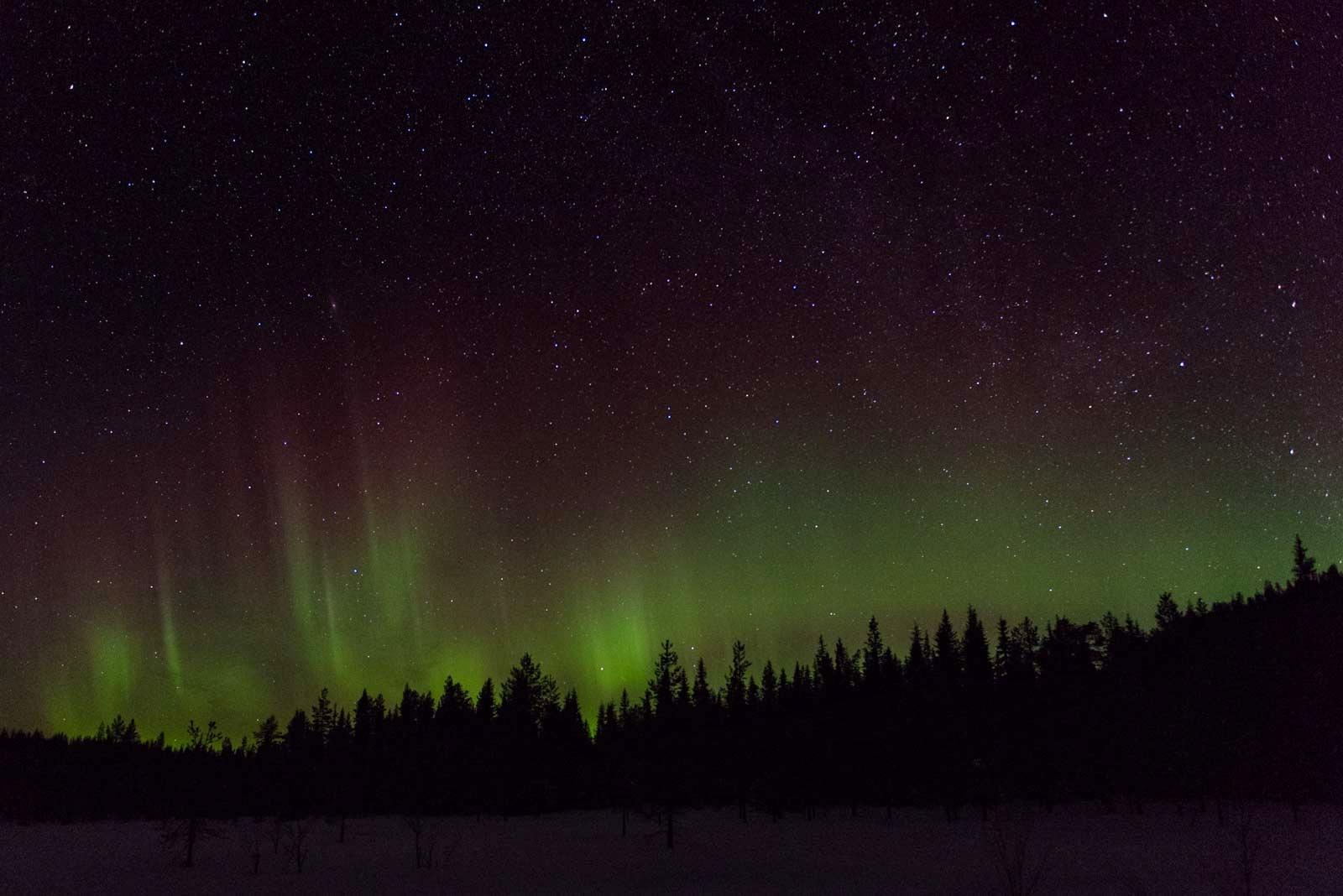 Prachtvolles Spektakel am Himmel: Nordlichter in Schweden